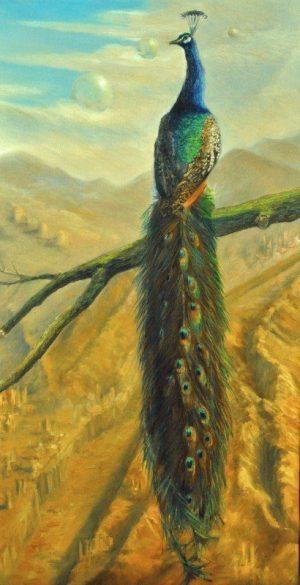 Peacock I #oilpainting R.Algera