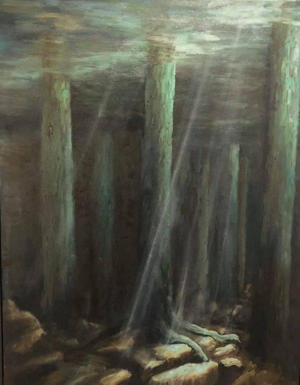 Een onderwaterbos. Het zonlicht valt in strepen door de diepte heen en verlicht de wortels en steenbodem.