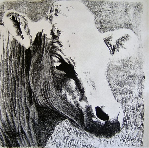 lithography of a cow by Gabriëlle Westra