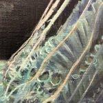 detail jellyfish 132